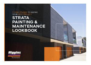 Higgins Strata Painting Maintenance Lookbook